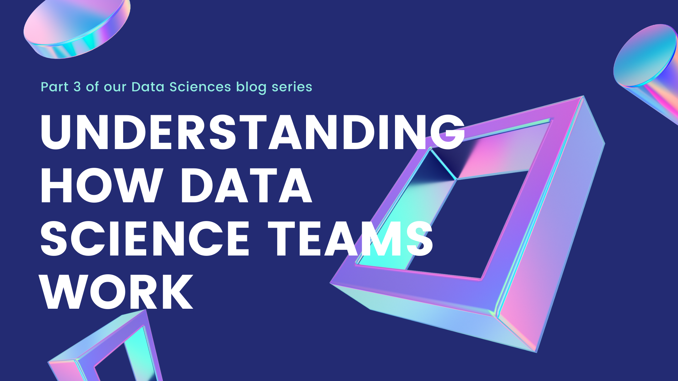 Data Science team: How it works?